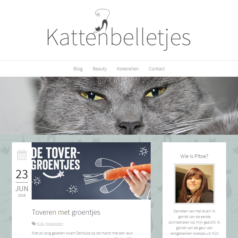 Screenshot website Kattenbelletjes
